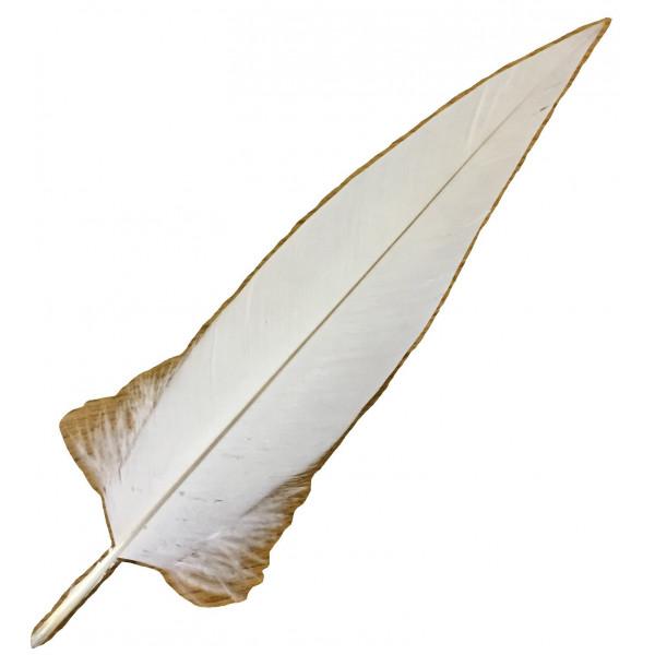 penna alpini bianca di aquila da ufficiale