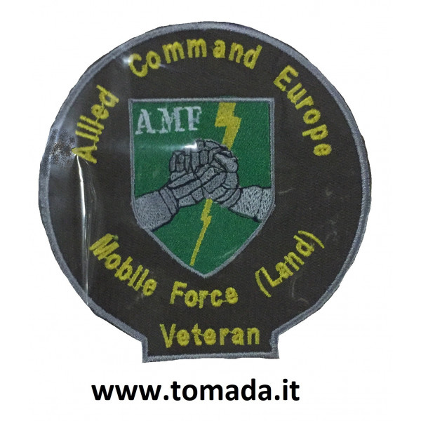 allied command europe mobile force land veteran